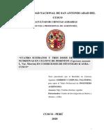 tesis sustentado a empastar.pdf