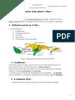 fleur-pdf-2019.2020-1