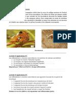 DOC COURS 5ème NUTRITION DES INVERTEBRES