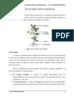 cours_racines_pdf.pdf