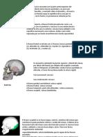 Nuevo Presentación de Microsoft PowerPoint (1).pptx