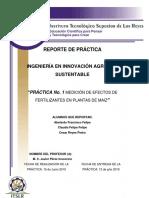 Reporte_Práctica Plantas de Maiz