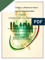 IPS_U2_A1_ERBM
