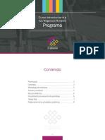 Programa Curso Introductorio a los Negocios Rurales 2020-4