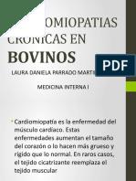 CARDIOMIOPATIAS CRONICAS EN BOVINOS (1)