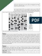 12 - Teste de DNA.pdf