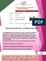 Socialización en La Organización