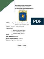 diagnostico rural participativo informe