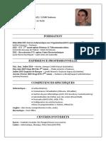 cv_dedieuvincent2016.pdf
