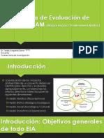 Metodología de Evaluación de Impactos RIAM.pdf