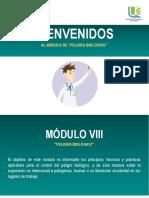 Modulo VIII. Peligro Biológico.pdf