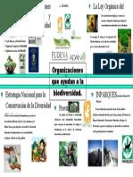 Organizaciones que ayudan a la biodiversidad.