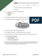 04_evaluacion_prueba_evaluacion_b