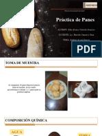 PRACTICA DE PANES/ BROMATOLOGIA