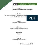 RAEnriquez_Cuestionario sobre  Morfología de plantas y hongos para identificación y clasificación taxonómica