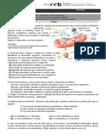 FF- Imunidade