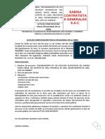 Ecovis Informativos  - Precios de Transferencia 2020.pdf