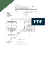 Pathophysiology - Diabetes Mellitus Type 2