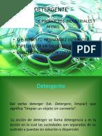 DETERGENTES1
