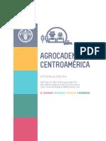 Agrocadenas Centro Americanas
