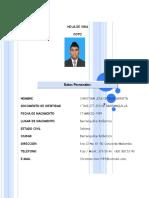 formato_hoja_vida_2014.doc