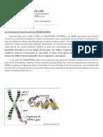 BIOLOGÍA ADN PAOLO