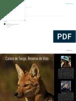 Los_Murcielagos.pdf