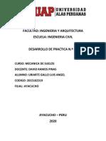 DESARROLLO DEL TRABAJO ACADEMICO Nº 01