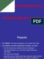 métabolisme-énergétique-2-lipides