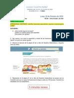 1602914510175_ACTIVIDADES  DEL 19 al 23 DE OCTUBRE 2020..pdf