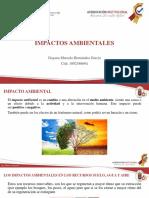 IMPACTO AMBIENTAL expo