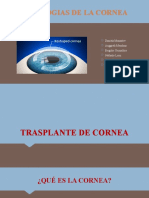 TRASPLANTE DE cornea correción