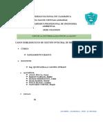 CASOS EMBLEMATICOS DE RR..docx