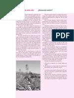 Desarrollo organizacional análisis