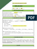 2FORMATO PERFIL DE CARGO (1)ff