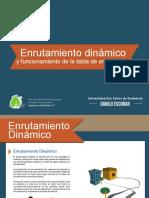 C09 - Enrutamiento dinámico v.1.5.pdf