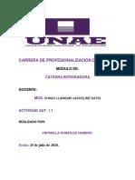 VINTIMILLA_ACTIVIDAD_1.1_CATEDRA