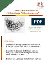 Detección de A H1N1 mediante RT-PCR