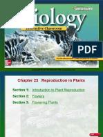 Biology Ch. 23.ppt