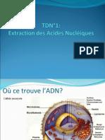 TD N_01_Extraction des acides nucléiques.ppt