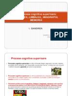 4.Procese cognitive superioare - 1.GANDIREA