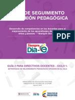 Ruta de seguimiento y reflexion pedagogica - desarrollo de competenciasw