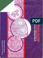 Histology 1.pdf