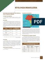 climatologia-brasileira