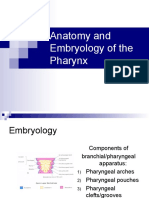 Anatomy and Embryology of the Pharynx1.pps