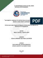 GARCÍA_EMILIO_LYMPHOCYTE_DETECTION_GASTRIC_CANCER.pdf