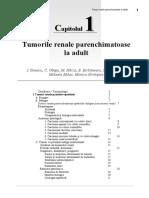 288401081-Tumori-Renale.doc