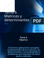 Tema 6 Matrices y determinantes