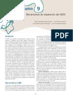 TUM - cap.9Biología molecular Salazar.pdf