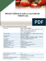 PROJET TOMATE1